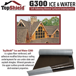 TopShield G300 Ice & Water